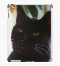 Joplin, RIP my friend iPad Case/Skin