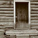 Log Home by Lynn  Gibbons