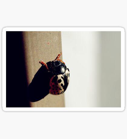 A Beetle Sticker