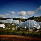 Eden Project by Richard Horsfield