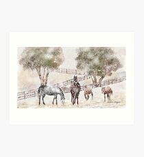 Snowy Pasture Art Print