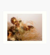 Dried Wedding Flower Still Life Art Print