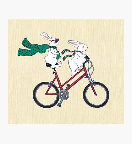 biking bunnies  Photographic Print