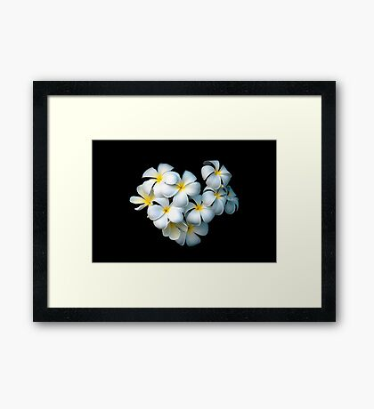 Frangipani Magic Framed Art Print