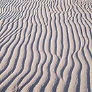 Ocracoke Beach Patterns by DianaTaylor/ JacksonDunes