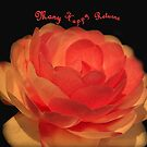Camellia #2 - National Camellia Show, Warragul, Vic by Bev Pascoe