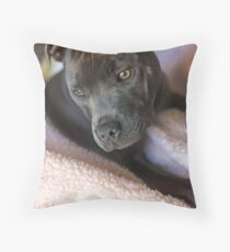 Pure Blue Staffy Throw Pillow