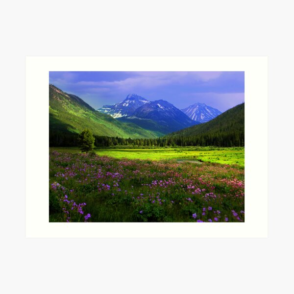 Christmas Meadows Art Print