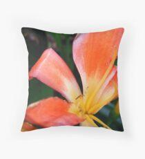 Kirstenbosch Botanical Gardens Throw Pillow