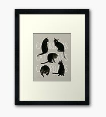 Caturdays - Black Cat Framed Print