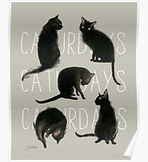 Caturdays - Schwarze Katze Poster