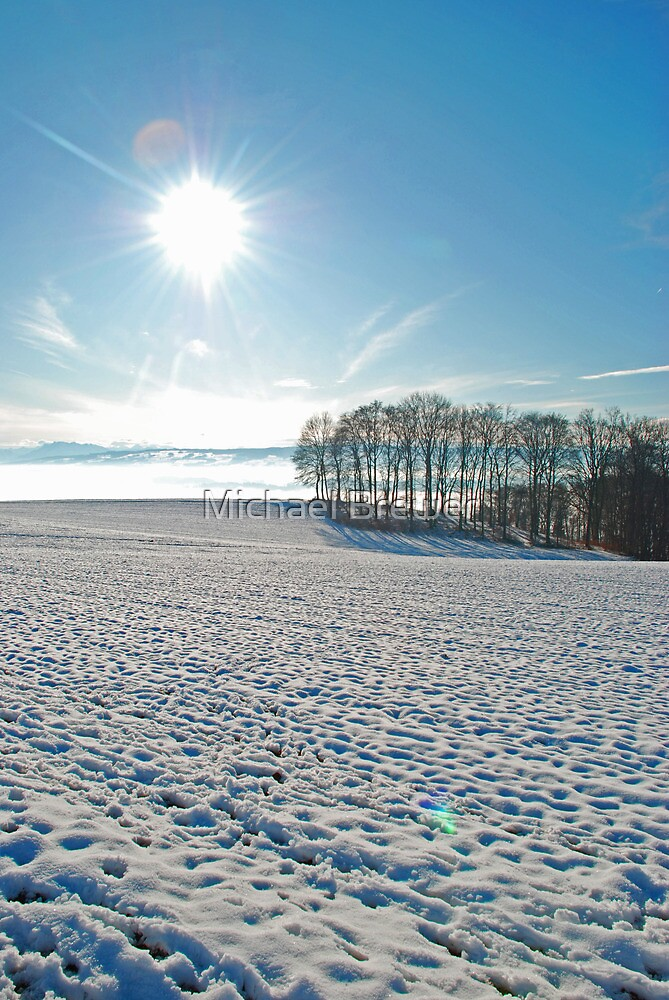 Snowy scene in the foothills of the Swiss Alps by Michael Brewer