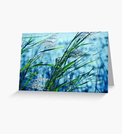 Blue Afternoon Greeting Card