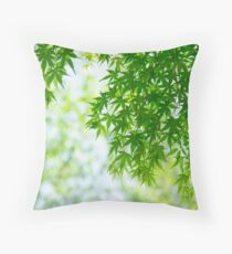 Green leaves of Japanese maple Throw Pillow