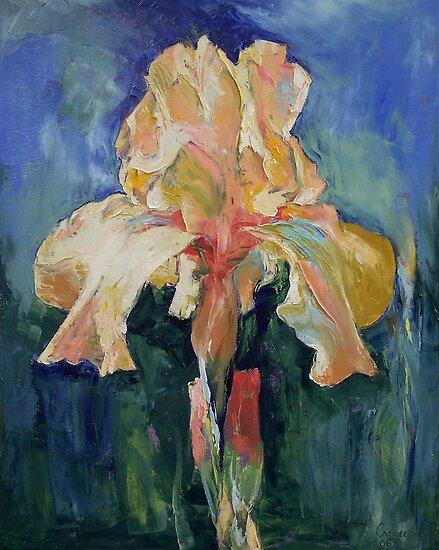 Dutch Iris by Michael Creese