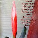 Believe in love.... by Ana Belaj