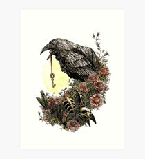 The Corvid Key Art Print