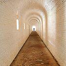Tunnel of Light by Janet Fikar