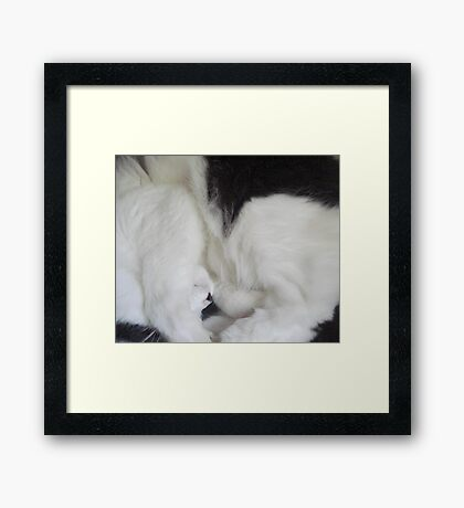 Dottie in the Round Framed Print