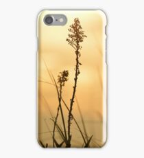 Dune Grass | Southampton, New York  iPhone Case/Skin