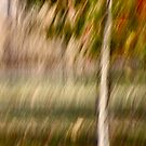 Small Tree in Autum by Lynn Wiles
