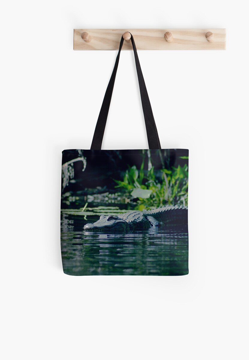 Alligator by MMerritt