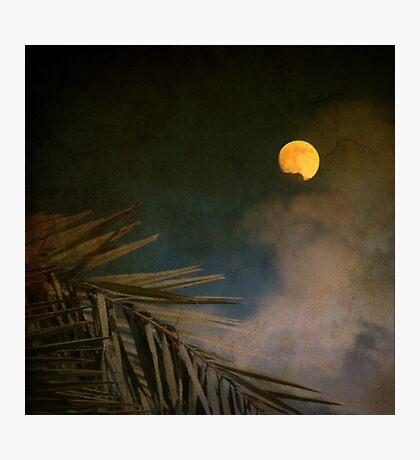 Florida Moon Photographic Print
