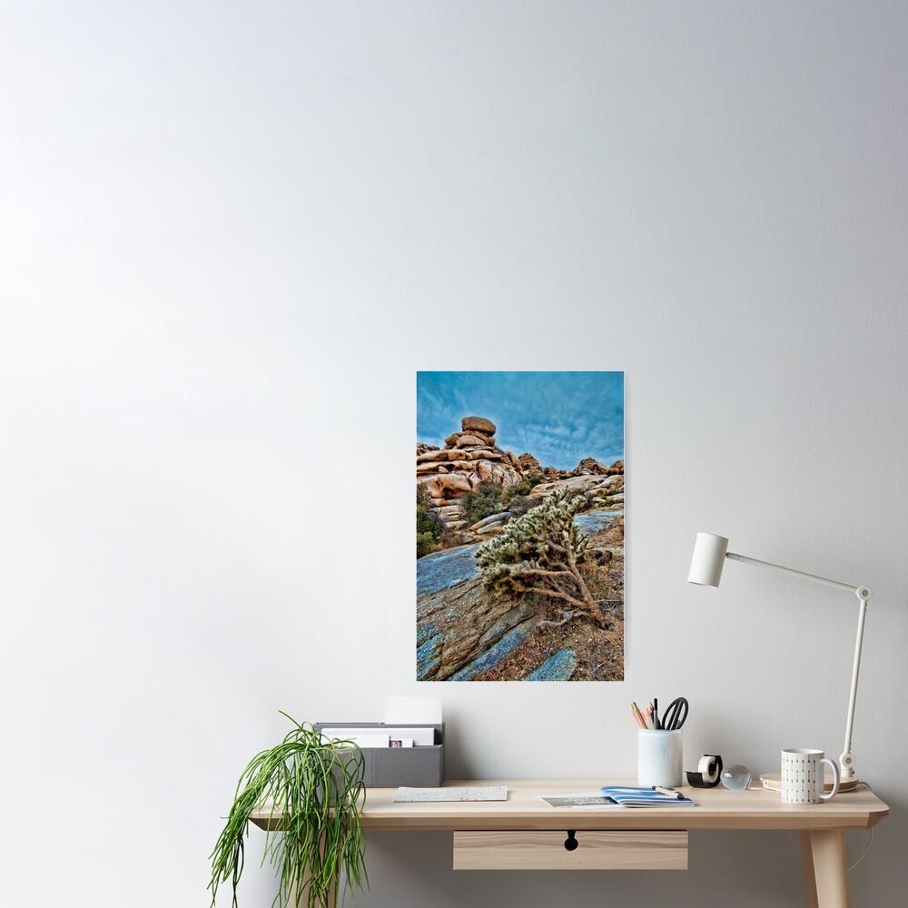 Joshua Tree on the Rocks Poster