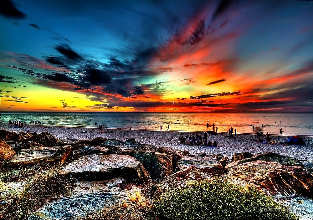 Wicked Sunset by Shannon Rogers