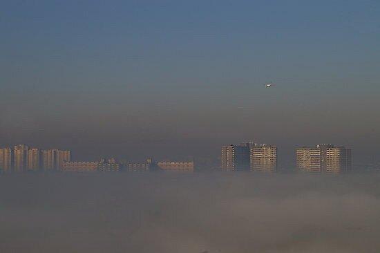 An Early Summer Morning Fog by Larry Llewellyn