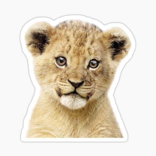 Baby Lion Portrait Sticker