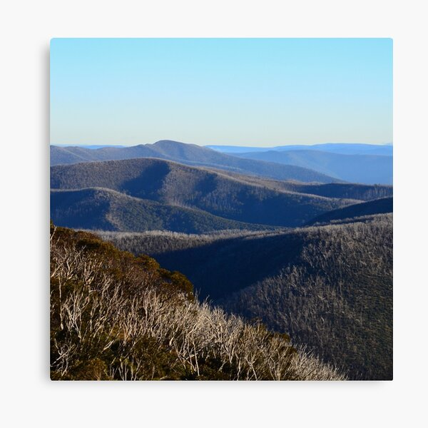 The View from Hotham Canvas Print