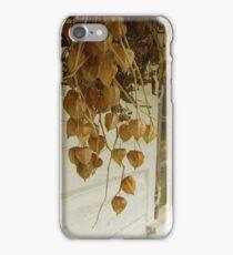 Dried iPhone Case/Skin