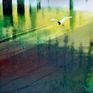 Flight of the Egret by Elizabeth Bravo