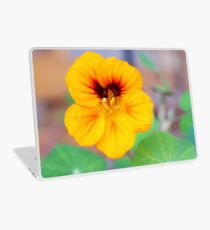 November Nasturtium Laptop Skin