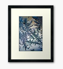 OnePhotoPerDay series: 025 by L. Framed Print
