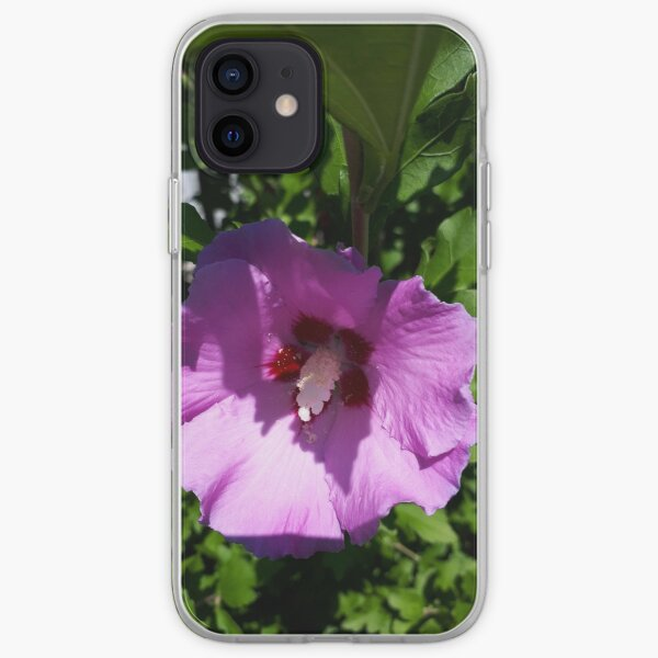 The Glory of Morning iPhone Soft Case