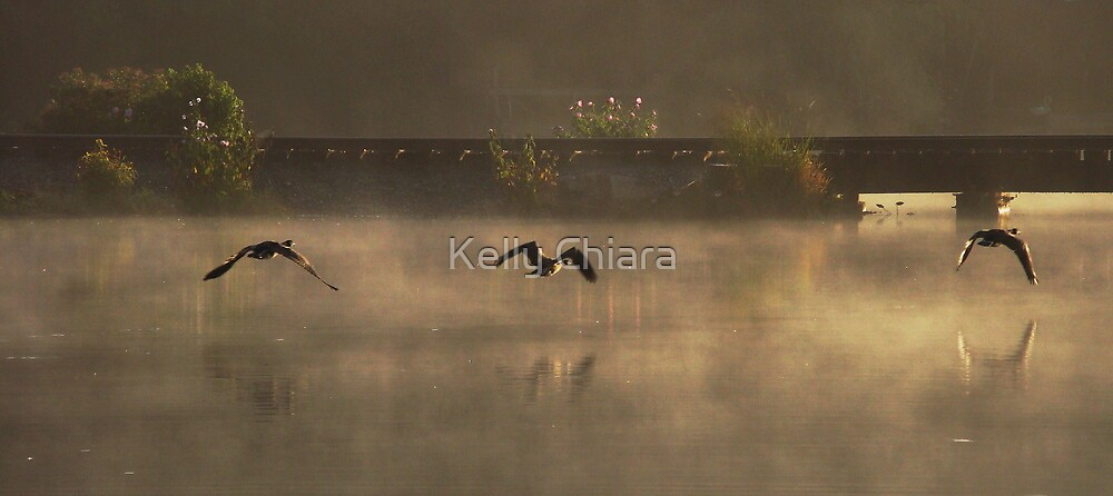Three Geese in the Mist by Kelly Chiara