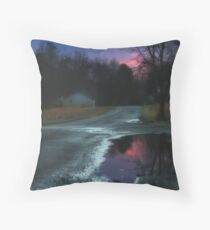 I went for a walk.... Throw Pillow