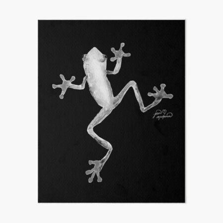 Red Eyed Tree Frog  Art Board Print