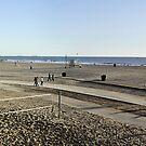 Santa Monica Beach by Clayton Bruster