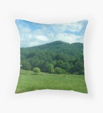 Tennesse Throw Pillow