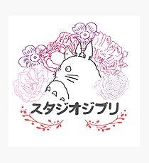 Studio Ghibli~ Totoro Photographic Print