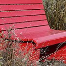 red bench by tego53