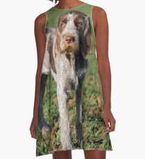 Italian Spinone Puppy Portrait A-Line Dress