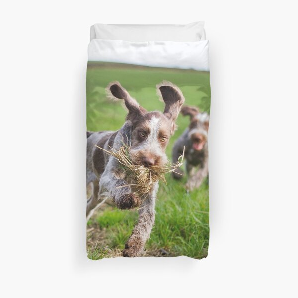 Italian Spinone Puppies Playing Chase Duvet Cover