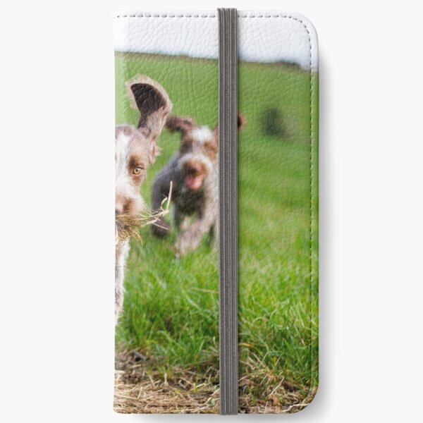 Italian Spinone Puppies Playing Chase iPhone Wallet