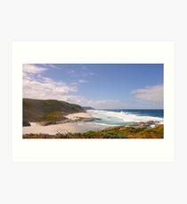 Glorious coast of the Southern Ocean Art Print
