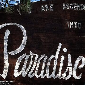 Paradise - 110818 by designfly