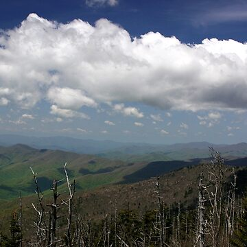Great Smoky Mountains II by suddath